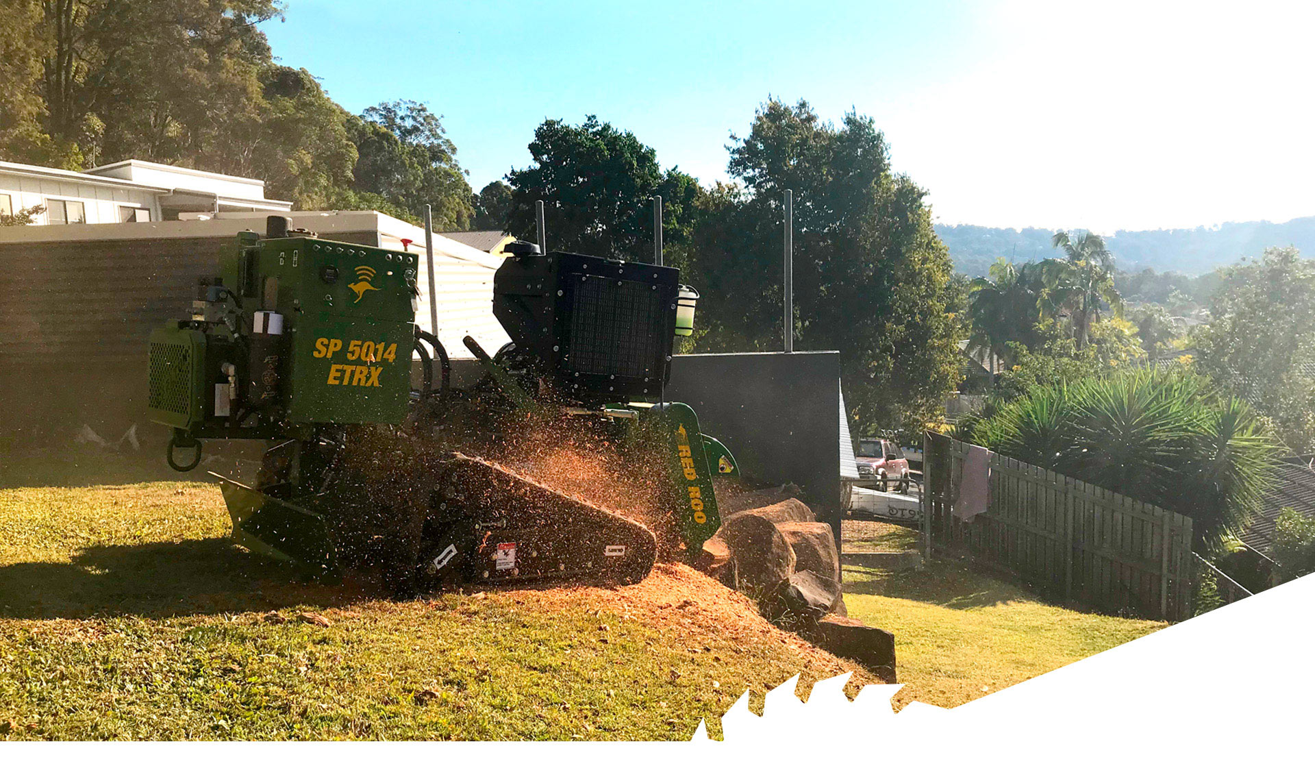 Stump Grinding Gold Coast, Tree removal service, Remove tree stump gold coast