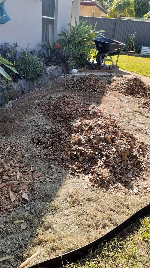Tree Stump Removal Service Gold Coast