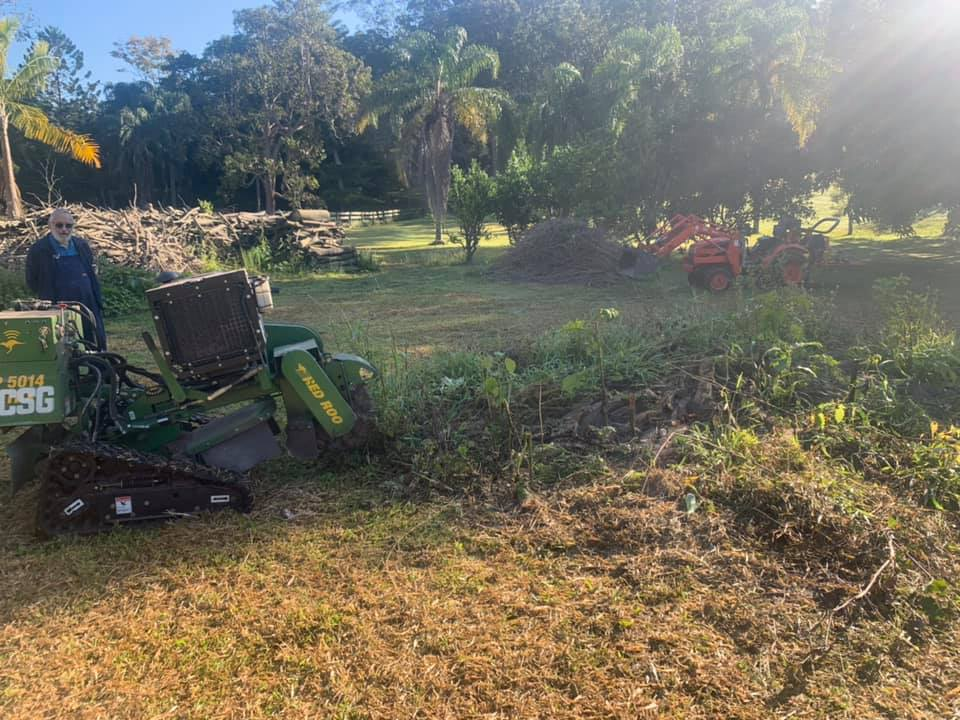 stump-removal-tree-root-removal-gold-coast