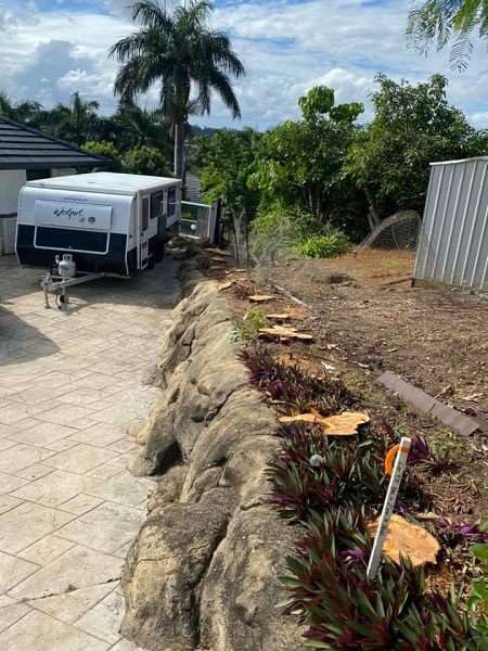 small-tree-stumps-along-garden-edge-ready-to-be-removed