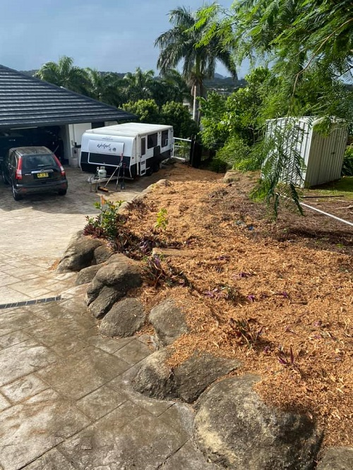 newly-removed-tree-stumps-garden-bed-covered-in-wood-chips